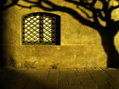 ombre di compassione